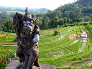 Бали. Фото 3