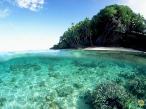Фиджи. Остров Вити-Леву