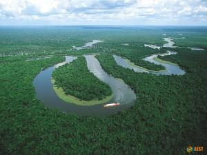 Река Амазонка. Фото