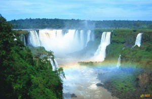 великая амазонка