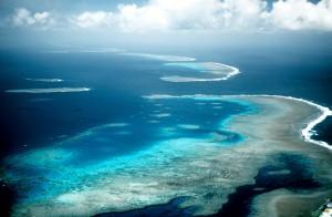 Большой Барьерный риф в Австралии. Фото