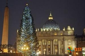 Главная ель Ватикана