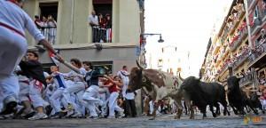 Забег с быками в Памплоне. Фото