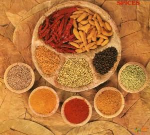 Традиционные индийские специи