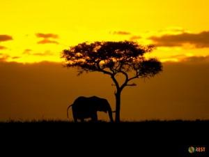 Лучшие страны Африки