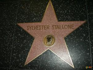 Звезда Сильвестра Сталлоне на голливудской Аллее звезд