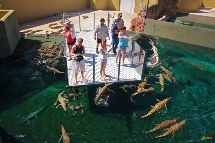Crocosaurus Cove в Австралии