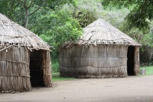 Племя Сенуа  или  «народ снов»