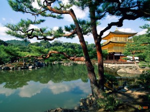 20 фактов о Японии