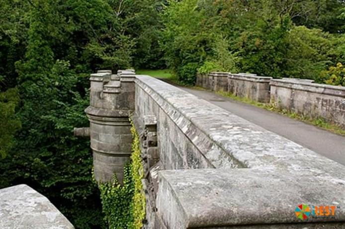 Мост собак-самоубийц Овертаун