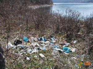 Важность вывоза мусора