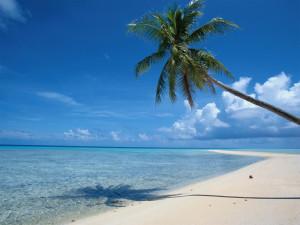 Как улучшить самочувствие с помощью поездки на море