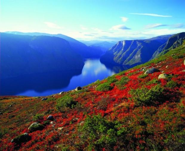Знакомимся с Норвегией