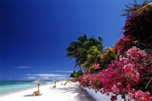Остров Маврикий — истинная роскошь!