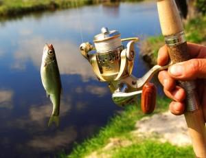 Отдых на рыбалке