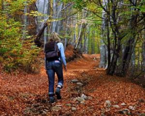 Идеи для осеннего туризма
