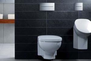 О современных инсталляциях в сантехнических помещениях