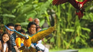 Сакральные путешествия по Бали