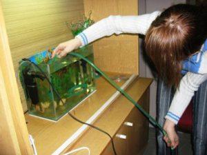 Ухаживаем за аквариумом правильно!