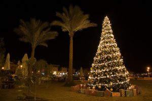 Новогодние праздники в Турции