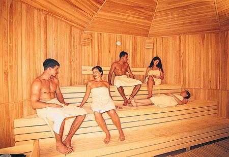 sauna_fin